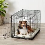 Comparatif cage chien taille 3