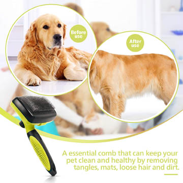 guide dachat brosse chien douce