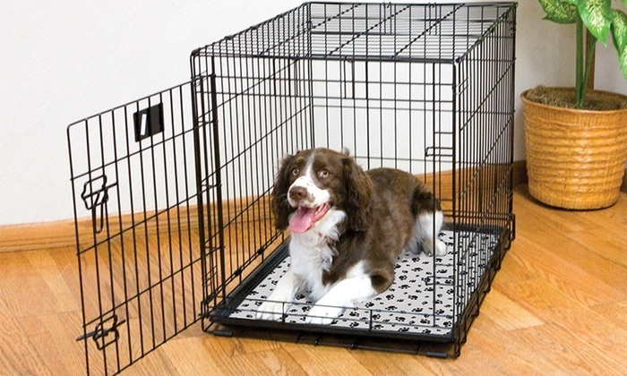 test cage chien moyenne taille