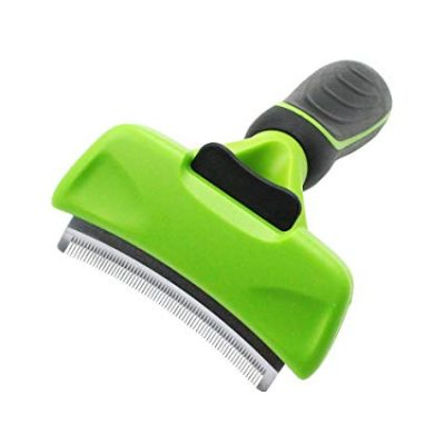 guide dachat brosse chien card