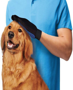 guide dachat brosse chien golden