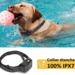 Meilleur avis sur collier chien intervention
