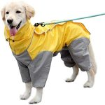Comparatif manteau chien impermeable capuche