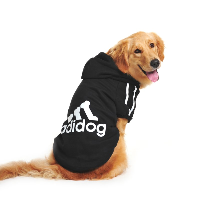comparatif sweat chien adidog