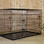 Guide d'achat cage chien blanche