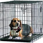Guide d'achat cage chien xl savic