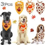 Guide d'achat collier chien halloween