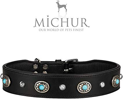 guide dachat collier chien michur