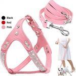 Guide d'achat harnais chien rose strass