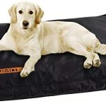 Guide d'achat tapis chien 70x50
