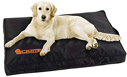 guide dachat tapis chien 70x50 1