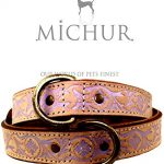 Comparatif collier chien 40cm michur