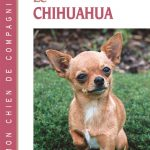 Guide d'achat livre chien chihuahua