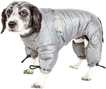 guide dachat manteau chien neige