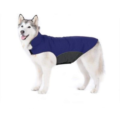 guide dachat pull chien 6 kg