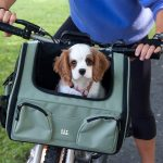 Guide d'achat transport chien velo