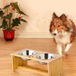 Comparatif gamelle chien ventouse
