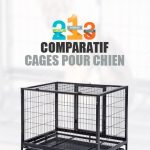 Guide d'achat cage chien 80 x 50