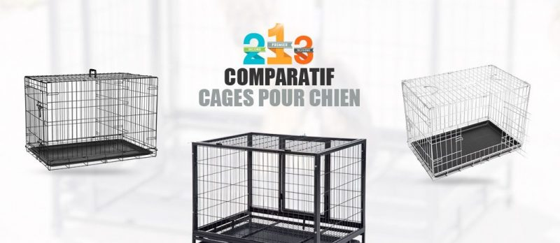 guide dachat cage chien 80 x 50