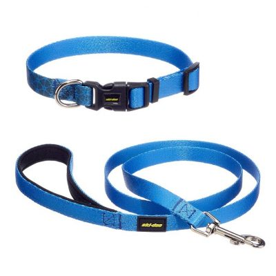 guide dachat collier chien 54cm