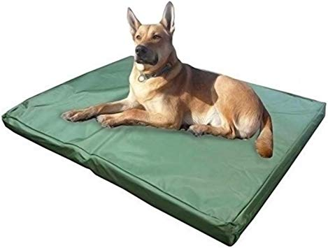 guide dachat tapis chien grande taille resistant