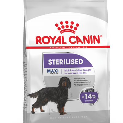 comparatif croquette chien royal canin sterilised