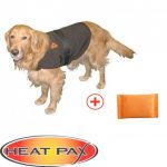 Comparatif manteau chien softshell