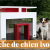 Comparatif niche chien barbie