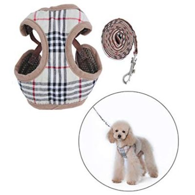 guide dachat laisse chien burberry