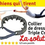 Meilleur avis sur collier chien etrangleur
