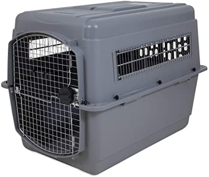 test cage chien xl transport