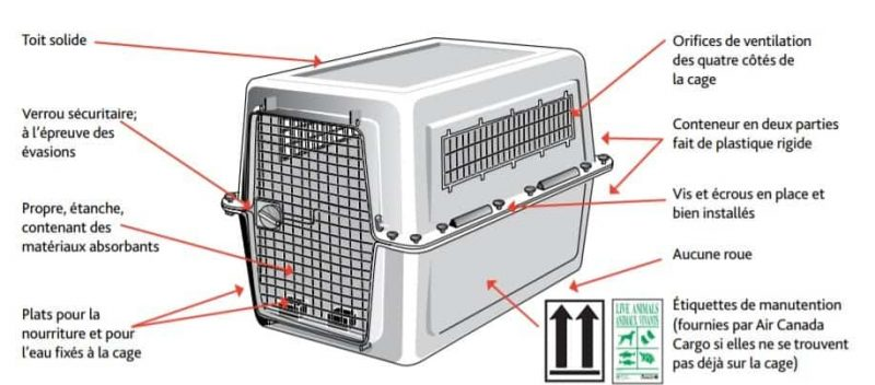 comparatif cage chien avion iata