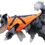 Guide d'achat manteau chien gwell