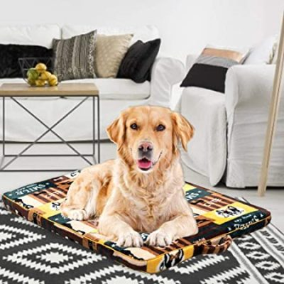 guide dachat tapis chien petite taille