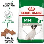 Test croquette chien royal canin mini adult